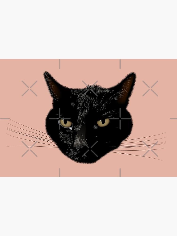NDVH Kimmy the Cat by nikhorne