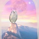 Sunset dream by MarleyArt123