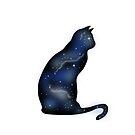 Cosmic cat 1 by MarleyArt123