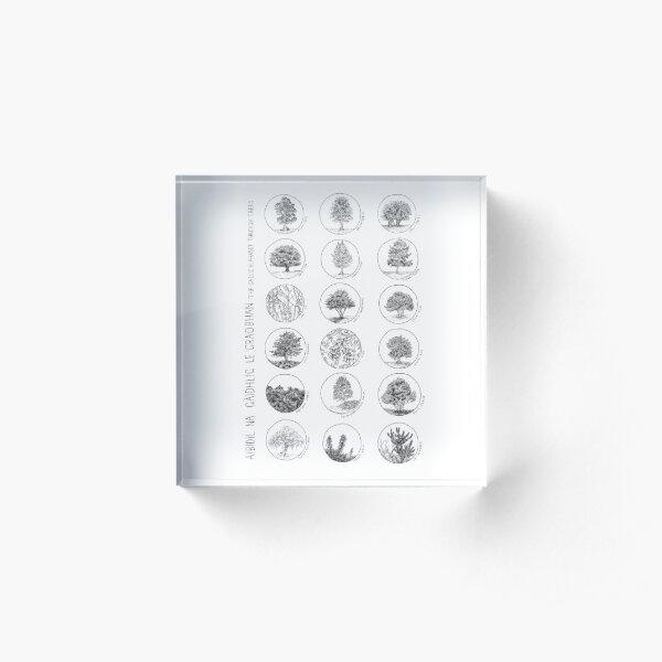 Aibidil Na Gàidhlig Le Craobhan Acrylic Block
