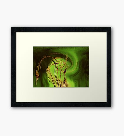 Storm damage Framed Print