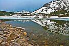 Tioga Pass by photosbyflood