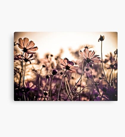 Dance with the wind...: EXPLORE Featured Work; Sold 3, Got 3 Featured Works Metal Print