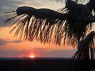 Wintry Ozark Sunset by John Carpenter