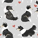 Collie Love by Elspeth Rose