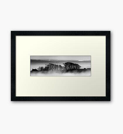 Trees above the Mist Framed Print