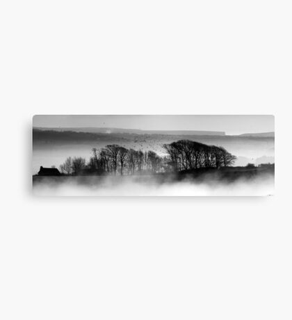 Trees above the Mist Canvas Print