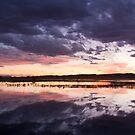 Bosque Sunset by Mitchell Tillison
