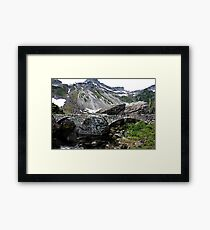 There May Be Trolls 9 Framed Print