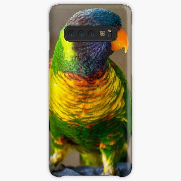 Rainbow Lorikeet Samsung Galaxy Snap Case