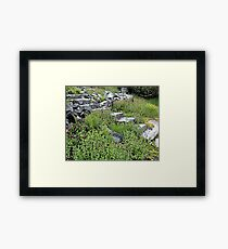 There May Be Trolls 14 Framed Print