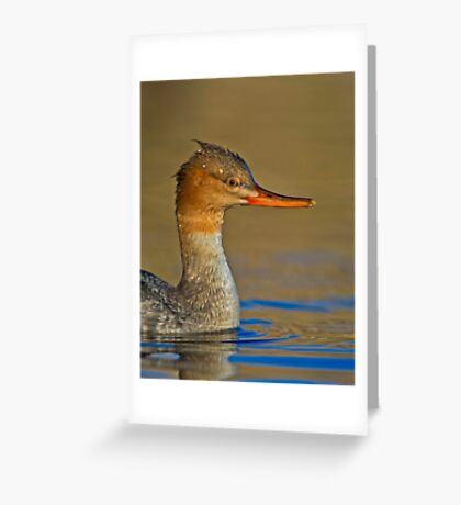 Duck, Hide Greeting Card