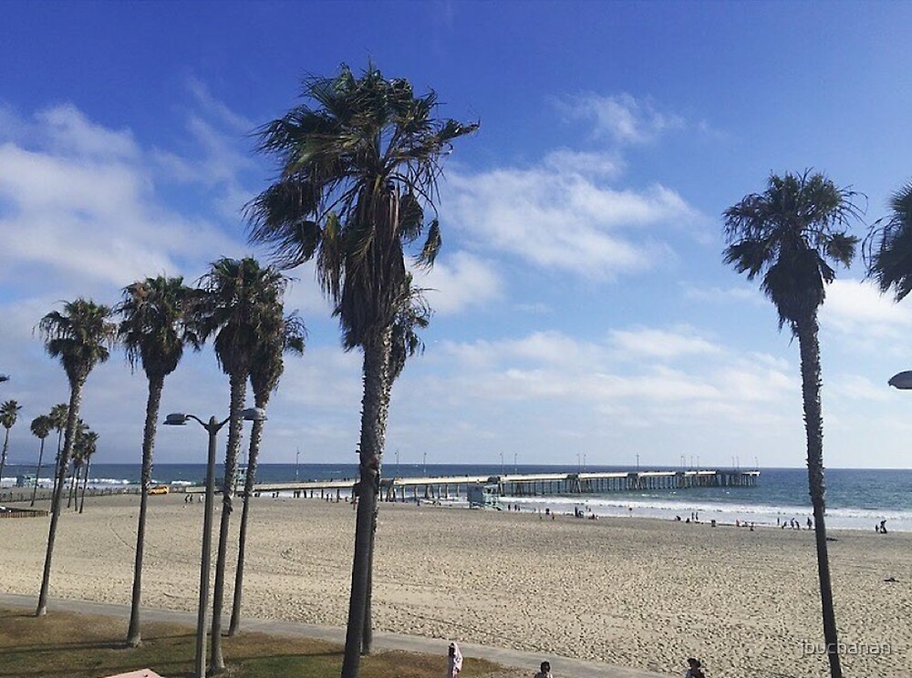 Palm Trees and Pier at Venice Beach, CA by jbuchanan