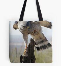 Gray Hawk  Tote Bag