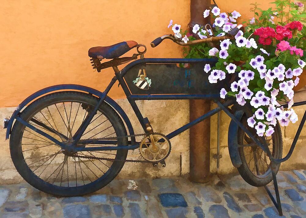 Pedals for Petals by Chuck Fletcher