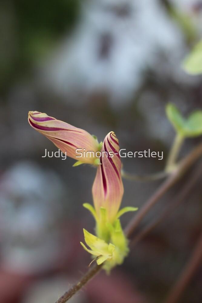 Love Buds by Judy   Simons-Gerstley