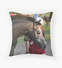 Racer from Sabac - Two Throw Pillow