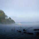 Dawn's Veil by Jeanne Sheridan