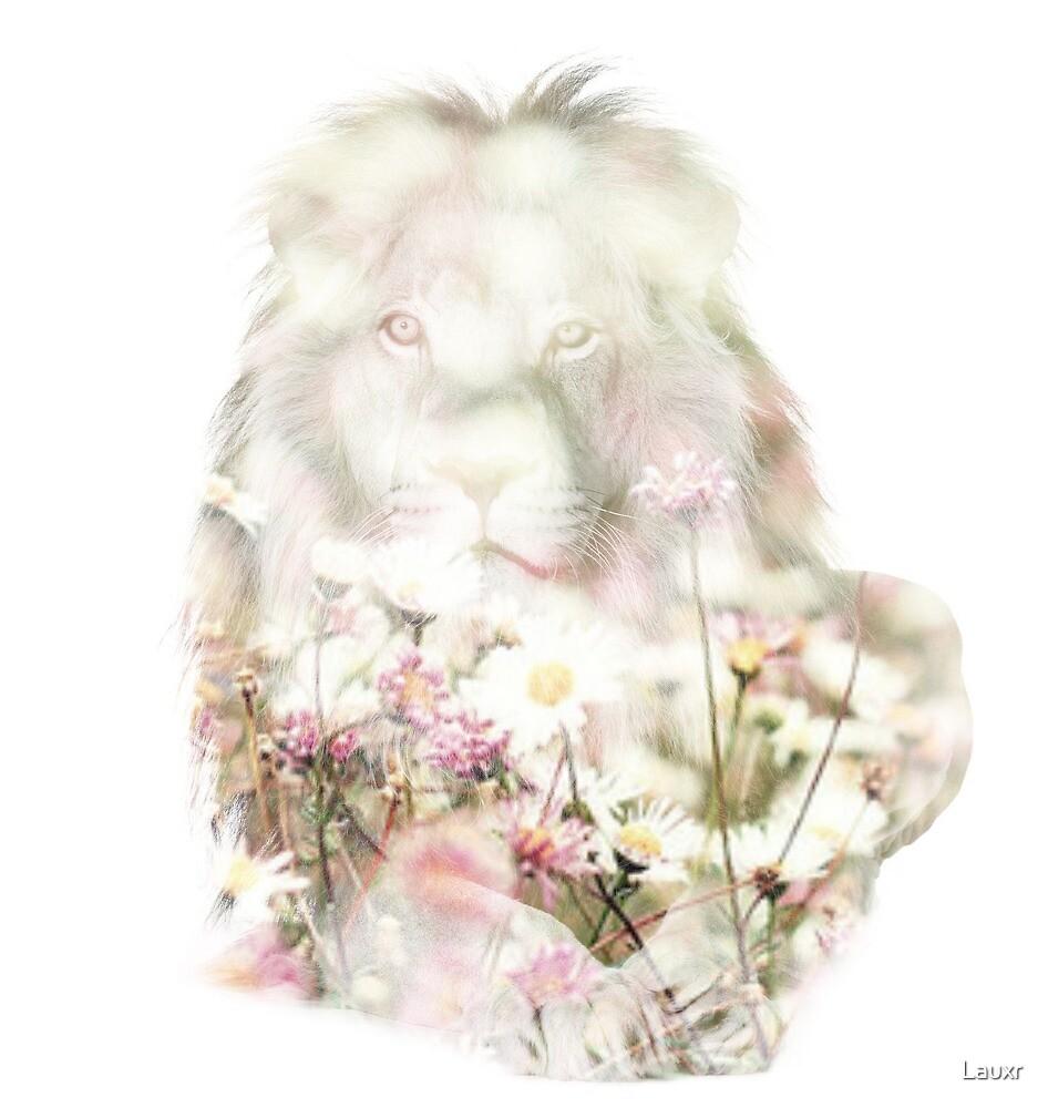 Beau Lion  by Lauxr