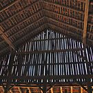 Barn Boards by Ray4cam