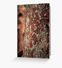"""""""Painted"""" Trees - Bradenton, Florida Greeting Card"""