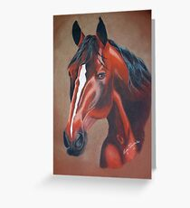 Stockhorse Greeting Card