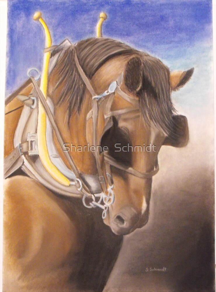 Workhorse by Sharlene  Schmidt