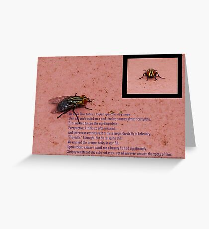 Fly with ruby red eyes Greeting Card