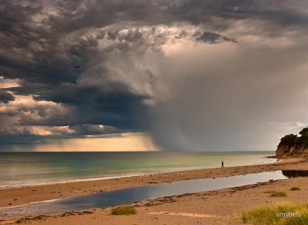 Looks Like Rain by annibels
