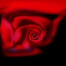 A rose by any other name ..... by John Dalkin
