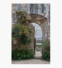 New Life by Old Wall and Gate in Antigua, Guatemala Photographic Print