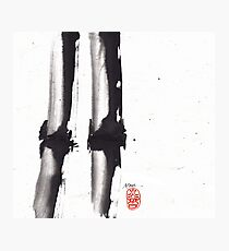 Bamboo Sumi-e Photographic Print