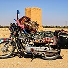 Saddle Sore in Palmyra  by MarcW