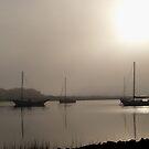 Foggy Mooring by BobJohnson