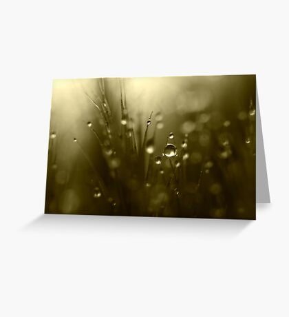 Twilight Hues Greeting Card