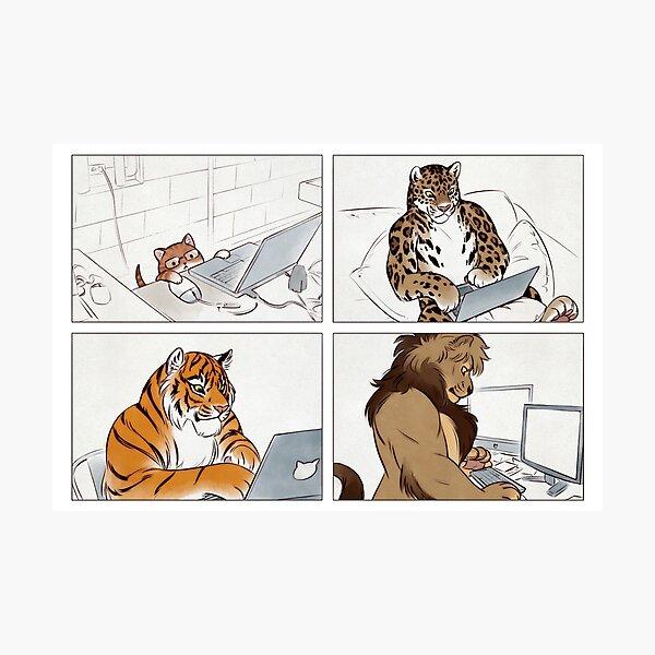 Cat Bros Photographic Print