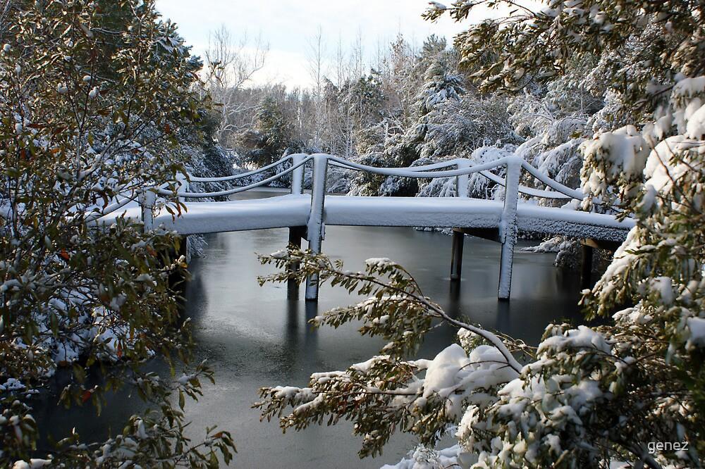 Foot-Bridge Over the Pond by genez