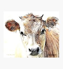 Jersey Milk Cow Photographic Print