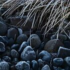 Stone Cold by Ritva Ikonen