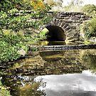 Bridge in the Park by Monnie Ryan