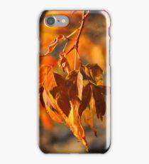 auburn autumn iPhone Case/Skin