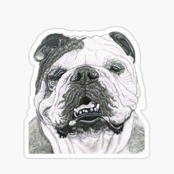 Cheery English Bulldog  Sticker