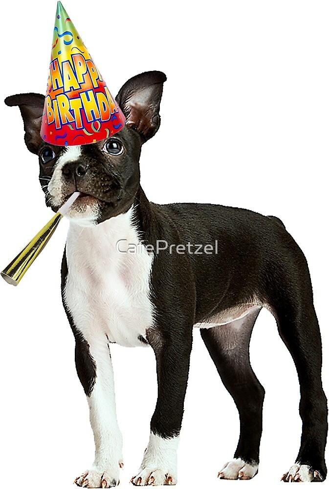 Boston Terrier Birthday by CafePretzel