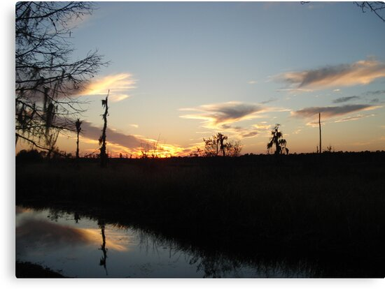 Sunset over Econfina Creek 2/11/2011 by May Lattanzio