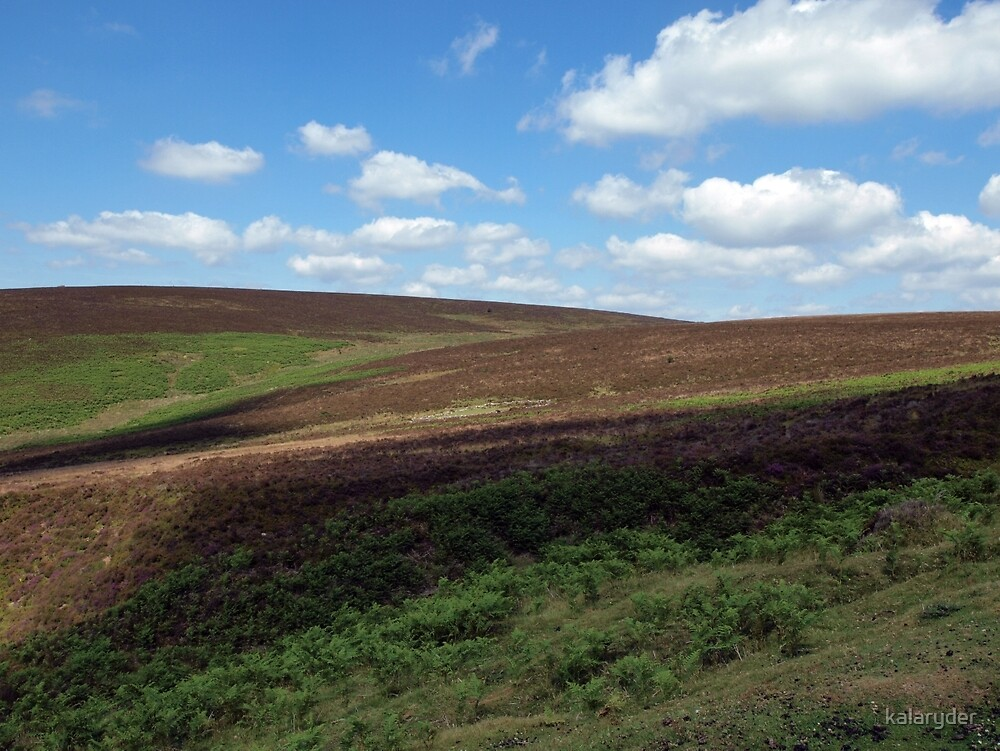 A view across the Moors by kalaryder
