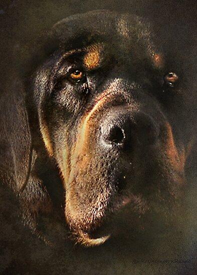 Sweetest Dog by kayzsqrlz