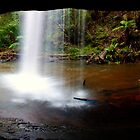 Pool of Life - Lower Kalimna Falls by Paul Oliver