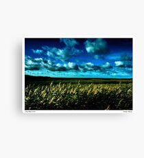Winter at Salthouse Marsh Canvas Print