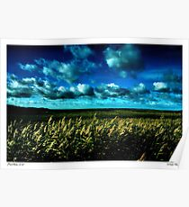Winter at Salthouse Marsh Poster