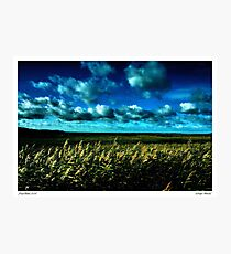 Winter at Salthouse Marsh Photographic Print